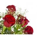 Ramo rosas y peluche