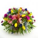 Cesta tulipanes anemonas