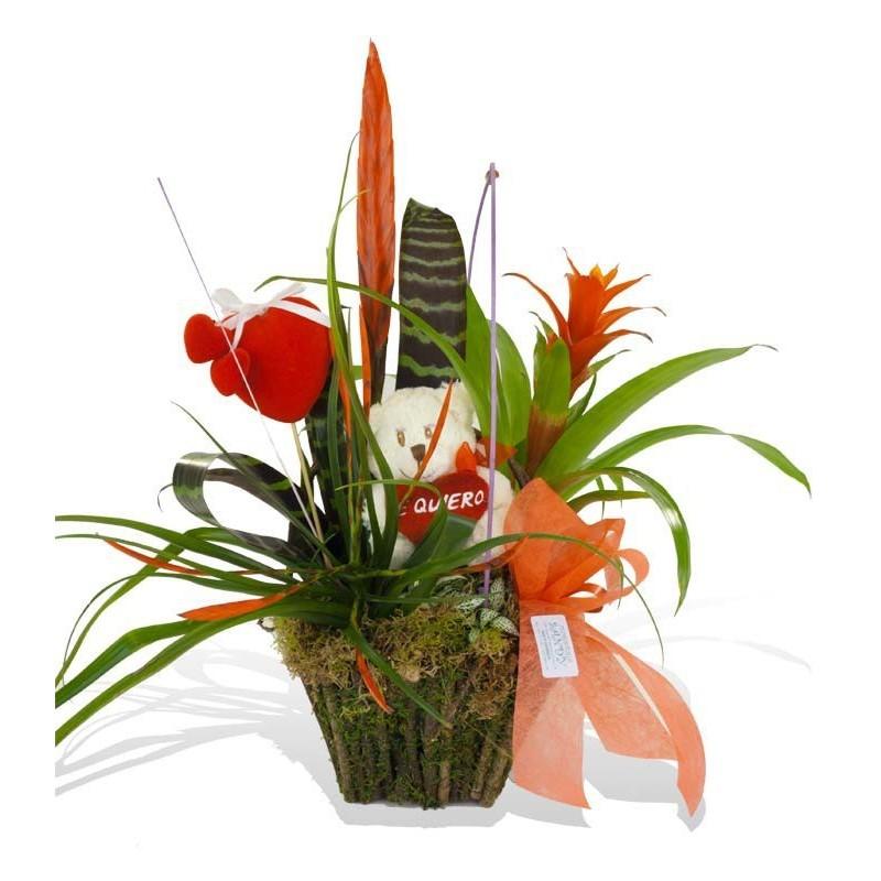 Cesta de plantas variadas con peluche