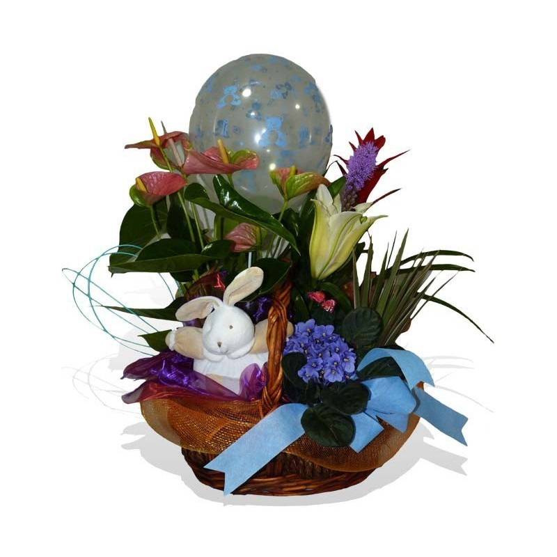 cesta de plantas y globo